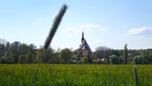 Oderwiesen am Kloster